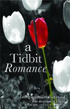 Tidbit Romance Cover