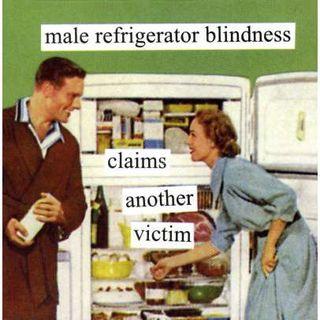 Vintage Refrigerator Ad 2